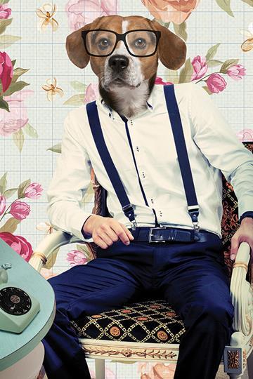 ראש כלב - ריקבון