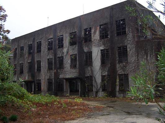 מפעל גז נטוש