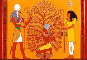 rikavon egyptian dmt